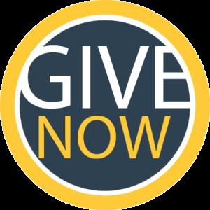 giveNowButton
